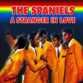 The Spaniels - A Stranger in Love by The Spaniels