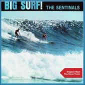 Big Surf! (Original Album Plus Bonus Tracks) de The Sentinals