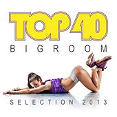 Top 40 Bigroom Selection 2013 by Various Artists