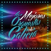 Las Mejores Orquestas de Galicia (The Best Festival Orchestras From Spain) de Various Artists