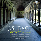 Bach: Motets, BWV 225 - 230 by Chamber Choir of Europe