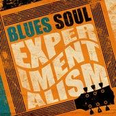 Blues: Soul Experimentalism de Various Artists