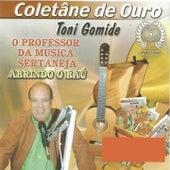 Toni Gomide Abrindo o Baú de Various Artists