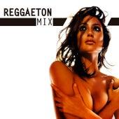 Reggaeton Mix de Various Artists
