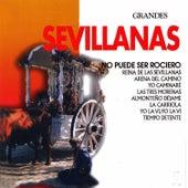 Grandes Sevillanas by Various Artists