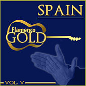Flamenco Gold. Spain. Vol. V de Various Artists