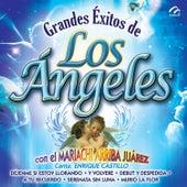 Grandes Éxitos - Los Ángeles Negros von Music Makers