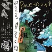 Bent Nail EP van Palehound