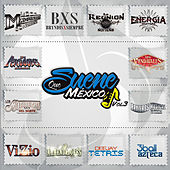 Que Suene Mexico, Vol. 3 de Various Artists