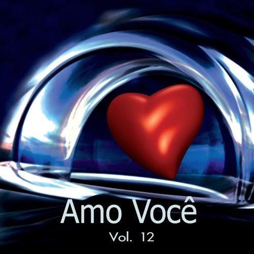Amo Você Volume 12 de Various Artists