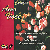 Amo Você Volume 3 von Various Artists