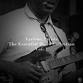 The Essential Blues Collection, Vol. 1 von Various Artists