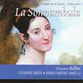 Bellini: La Sonnambula by Various Artists