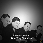 Doo Wop Wonders de Various Artists