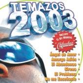 Temazos 2003 - 18 Hits von Music Makers