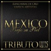 México Bajo Su Piel - Tributo a Luis Miguel de Various Artists