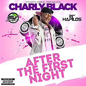 After the First Night - Single de Various Artists