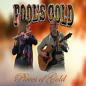 Pieces of Gold de Fool's Gold