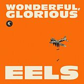 Wonderful, Glorious de Eels