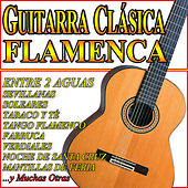 Guitarra Clásica Flamenca by Various Artists