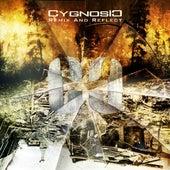 Remix and Reflect by Cygnosic