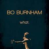 What. de Bo Burnham
