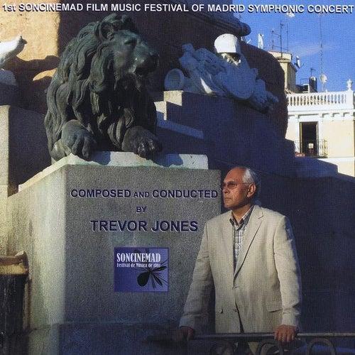 1st Soncinemad Film Music Festical by Trevor Jones