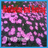 Meditation and Healing by The Dreams