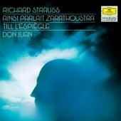 Strauss, R.: Also sprach Zarathustra; Till Eulenspiegel; Don Juan von Various Artists