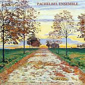 Pachelbel: Canon in D for Orchestra; Canon in D for Various Instruments - Vivaldi: The Four Seasons - Bach: Air On the G String & Violin Concertos - Albinoni: Adagio in G Minor - Walter Rinaldi: Works - Mendelssohn: Wedding March - Wagner: Bridal Chorus by Various Artists