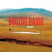 Grains by Boozoo Bajou