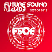 Future Sound Of Egypt - Best Of 2013 by Various Artists