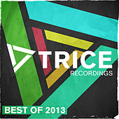 Trice Recordings - Best Of 2013 von Various Artists