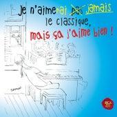 Je N'aimerai Jamais Le Classique, Mais Ça J'aime Bien ! de Various Artists