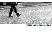 Walking The Blues, Vol. 1 de Various Artists