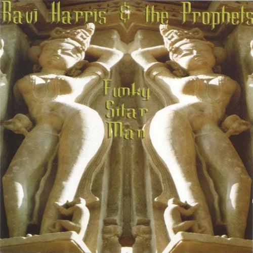 Ravi Harris - Funky Sitar Man by Ravi Harris