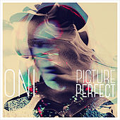 Picture Perfect by Oni