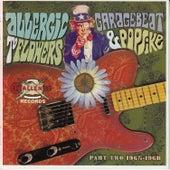 Allergic to Flowers: Garagebeat & Popsike, Pt. 2, 1965-1968 de Various Artists