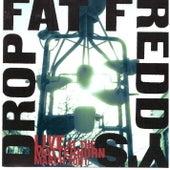 Live at Matterhorn de Fat Freddy's Drop