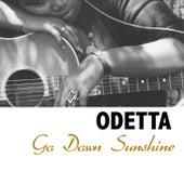 Go Down Sunshine de Odetta