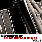 A Spoonful Of Slide Guitar Blues, Vol. 1 by Various Artists