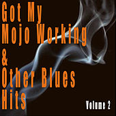 Got My Mojo Working & Other Blues Hits, Vol. 2 de Various Artists