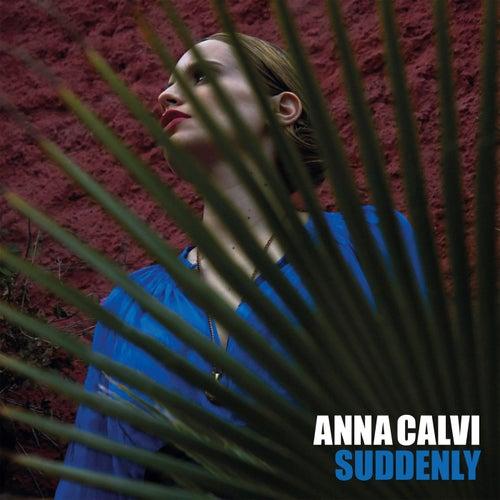 Suddenly by Anna Calvi
