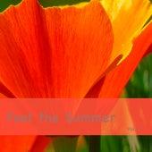 Feel the Summer, Vol. 2 de Various Artists