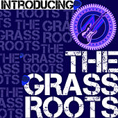 Introducing the Grass Roots de Grass Roots