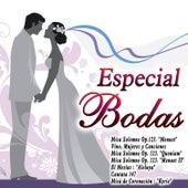 Especial Bodas by Various Artists