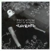 Lost In Reverie by Peccatum