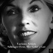 Schlager Fest, Mir Geht's Gut de Various Artists