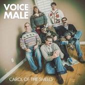 Carol of the Smells de Voice Male