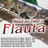 Música para Clases de Flauta de Various Artists